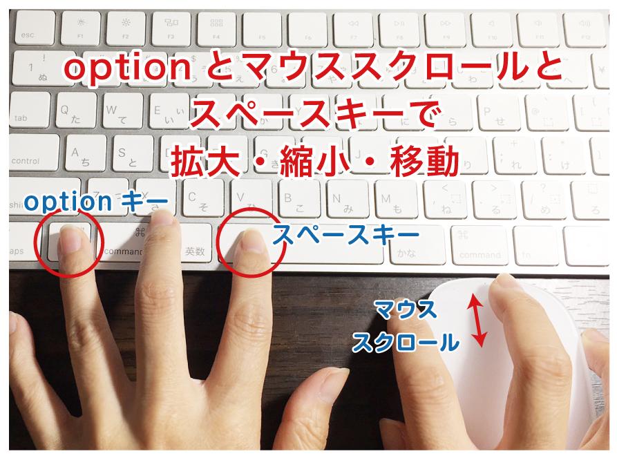 option、マウススクロール、スペースで拡大縮小移動